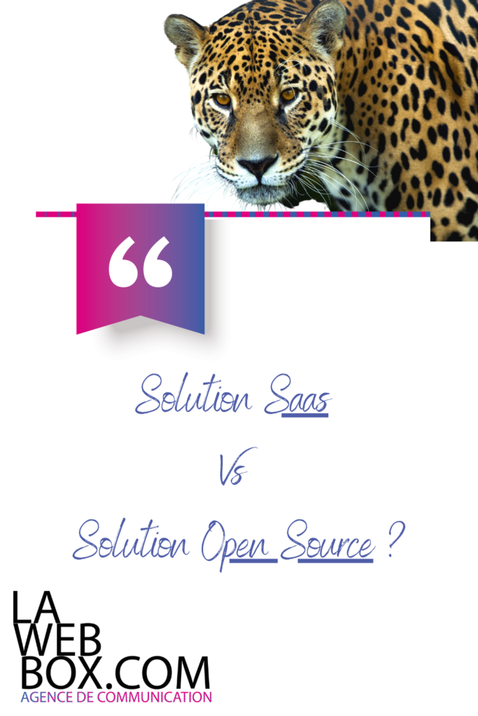 Solution SAAS VS Solution OPEN SOURCE
